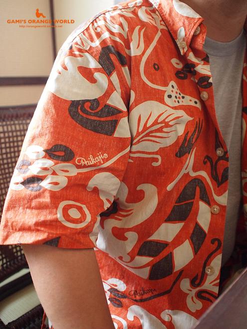 0341山頂の住人さんのオレンジシャツ3.jpg