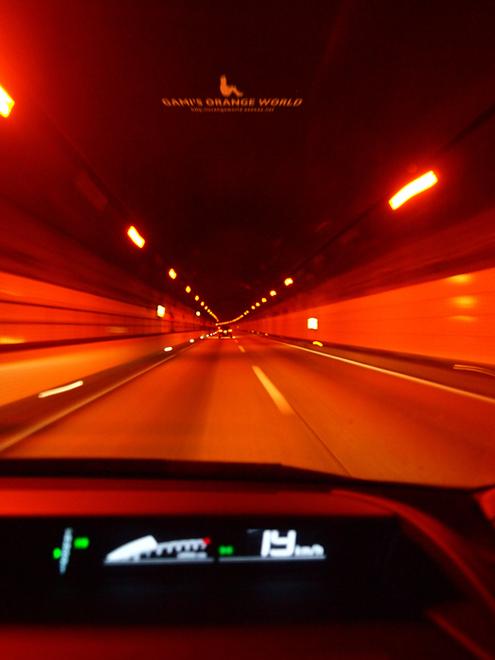 0395常磐道のトンネル1.jpg