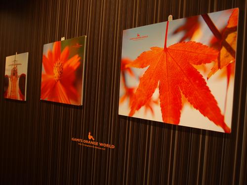 0413エル・カミーノdeオレンジの世界展3.jpg