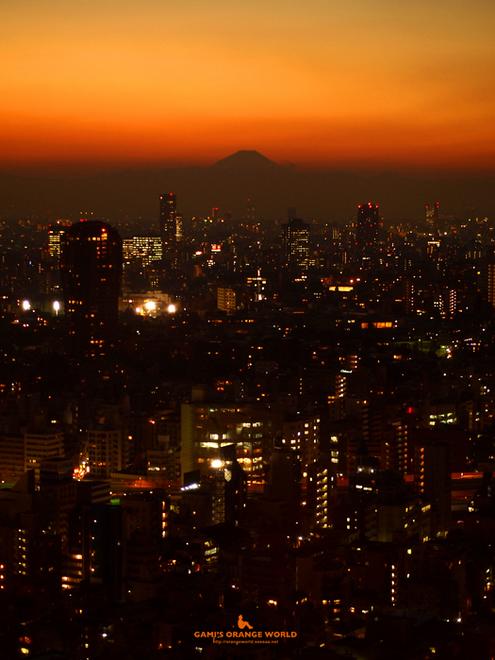 0468東京タワーから見た夕焼けと富士山3.jpg