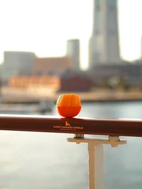 0514ふじ丸とオレンジ1.jpg