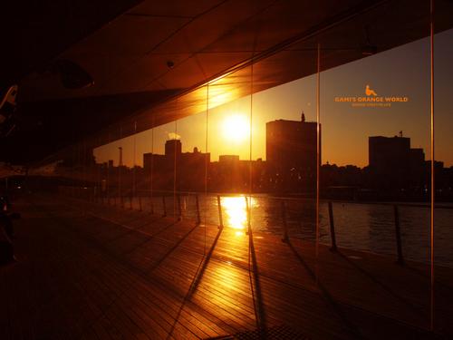 0514横浜の夕日2.jpg