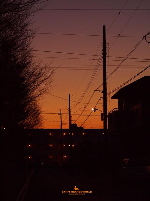 0525花田の夕焼け.jpg