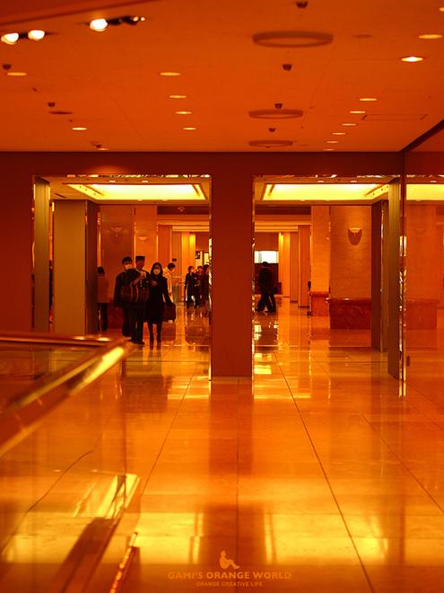 0530京王プラザホテル.jpg