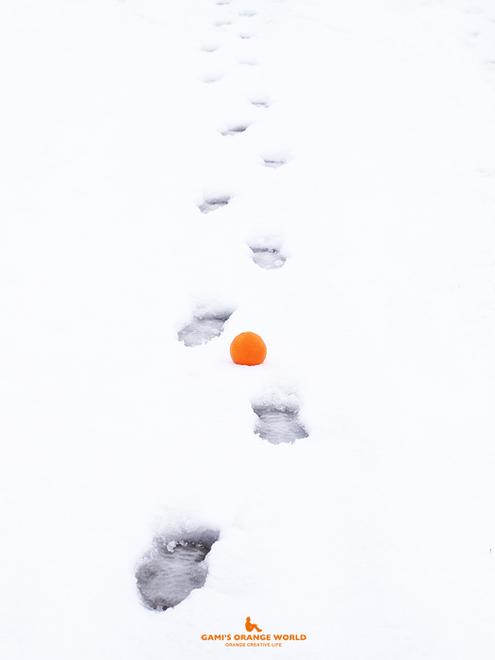 0532足跡とオレンジ8.jpg
