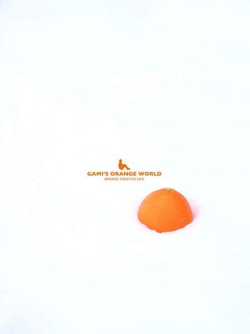 0532雪とオレンジ1.jpg