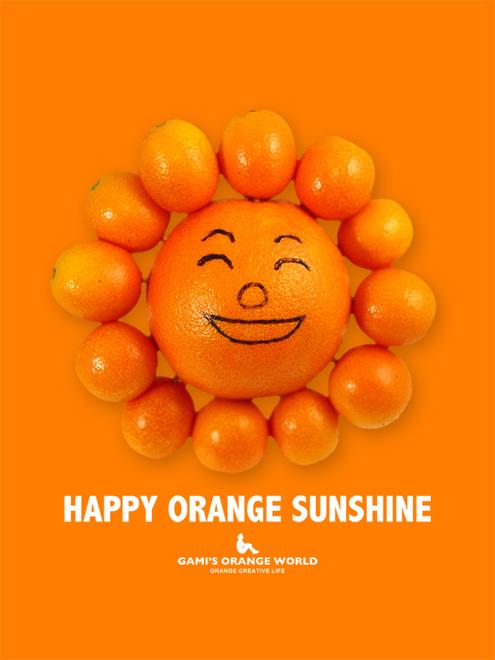 0536オレンジサンシャイン1 のコピー.jpg