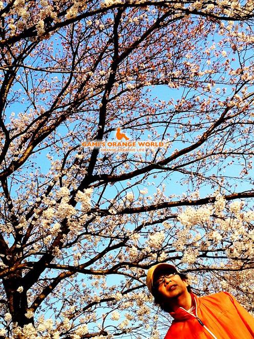 0565桜と私.jpg