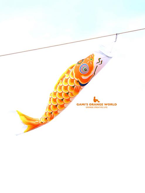 0585オレンジ鯉のぼり2.jpg