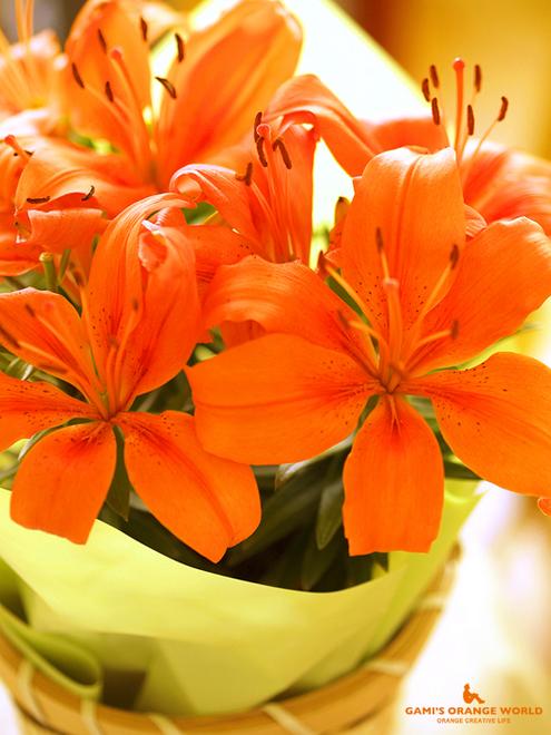 0597オレンジのユリ4.jpg