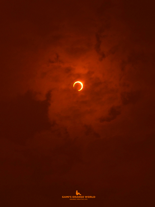 0600金環日食4 のコピー.jpg