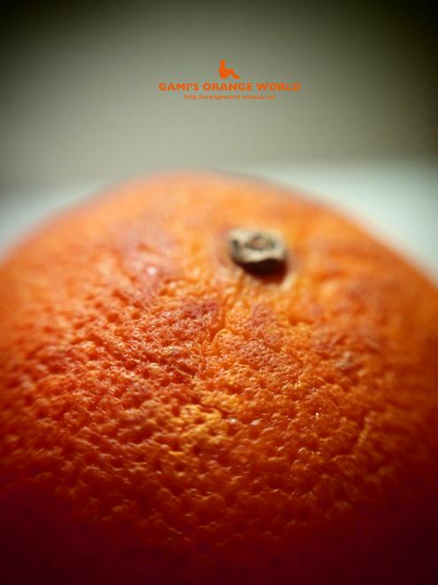 5代目オレンジ.jpg