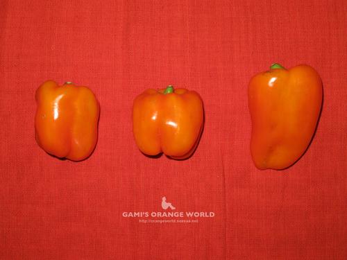オレンジのパプリカ.jpg