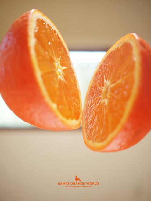 ミネオラオレンジ1.jpg