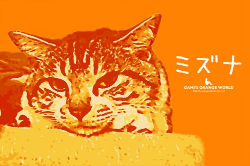 mizunaオレンジ.jpg