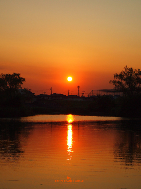 0347大吉親水公園の夕日1.jpg