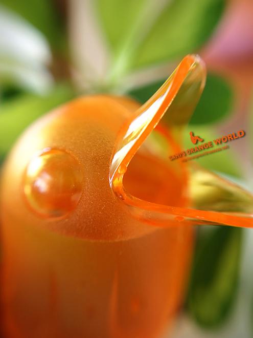 0425オレンジの水差し のコピー.jpg