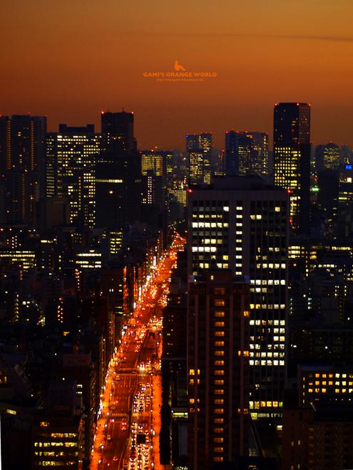 0469東京タワーから見たオレンジの道1.jpg