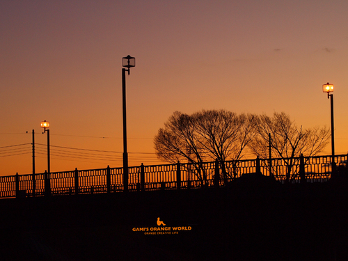 0485越谷の朝焼け1.jpg