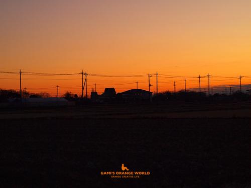 0485越谷の朝焼け3.jpg