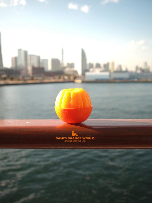 0514ふじ丸とオレンジ2.jpg
