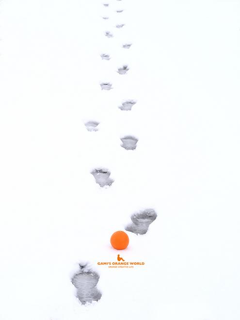 0532足跡とオレンジ2 .jpg