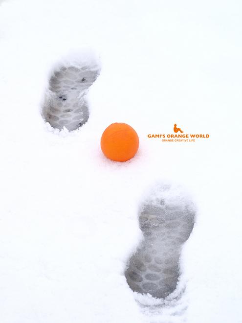 0532足跡とオレンジ6.jpg