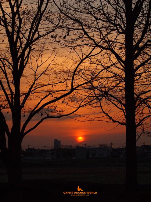0552越谷の夕日 のコピー.jpg