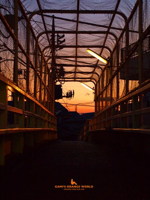 0553歩道橋からオレンジの夕焼け.jpg