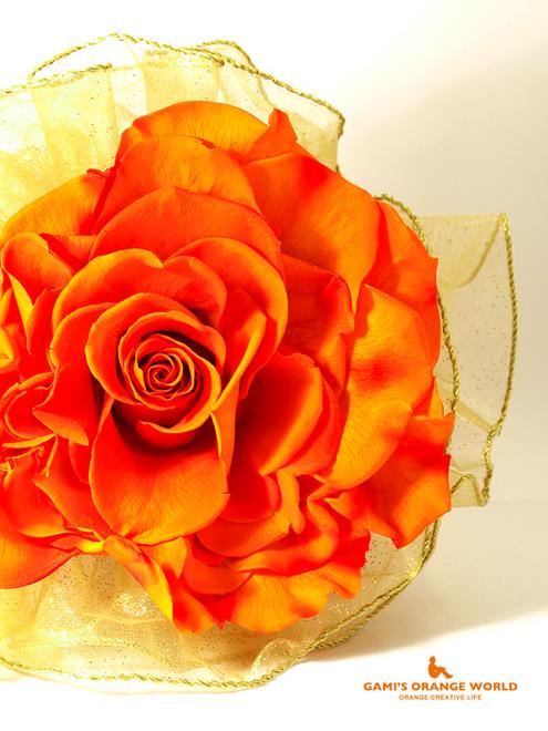 0592まさのさんから頂いたオレンジの薔薇3.jpg
