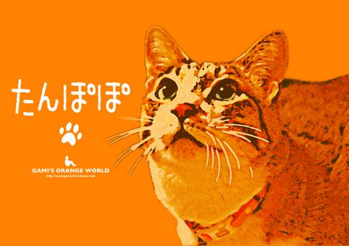 たんぽぽオレンジアート化.jpg