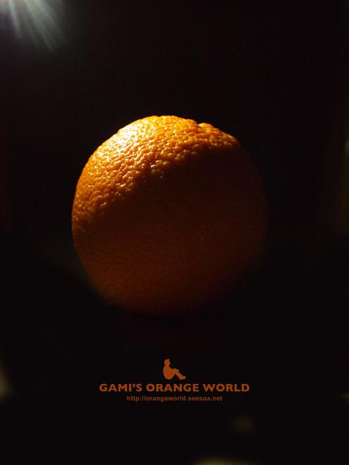 オレンジ影.jpg