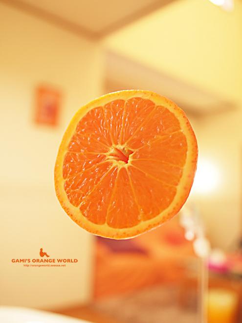 ミネオラオレンジ5.jpg