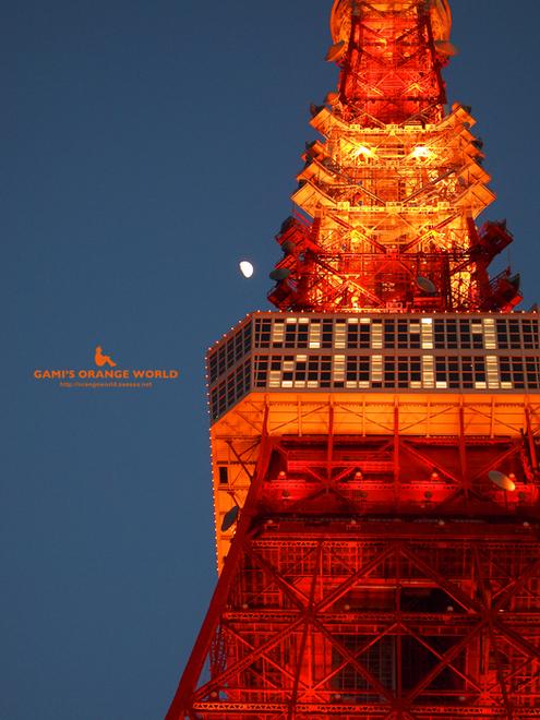 東京タワーのネオン1.jpg