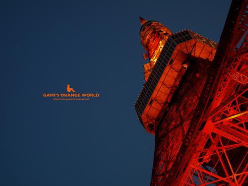 東京タワーのネオン5.jpg