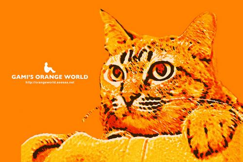 猫オレンジアート化4.jpg