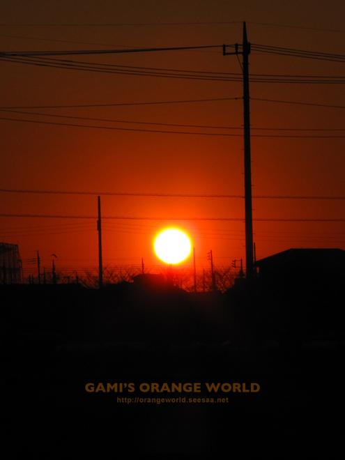 越谷の夕日2010-01-24.jpg