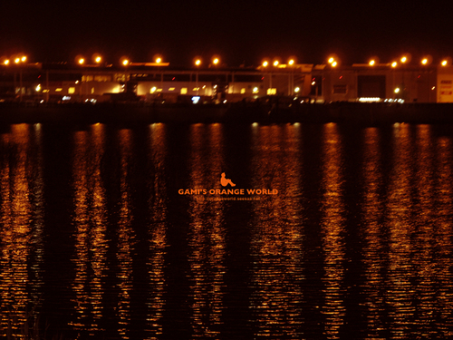 越谷レイクタウンの夜景.jpg